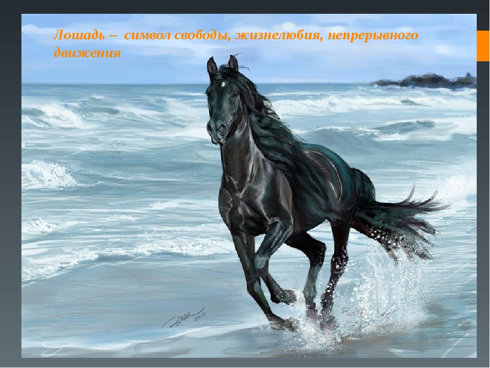 Лошадь – символ свободы, жизнелюбия, непрерывного движения
