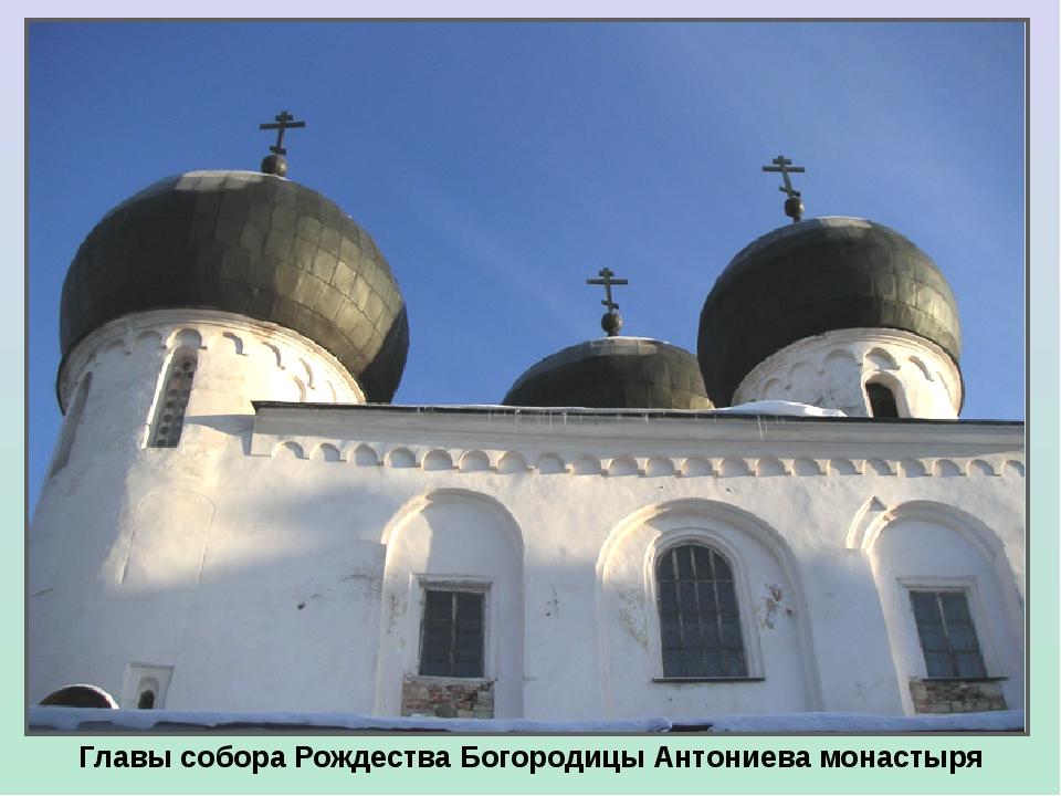 Главы собора Рождества Богородицы Антониева монастыря