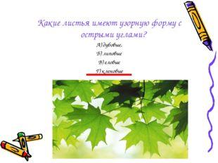Какие листья имеют узорную форму с острыми углами? А) дубовые, Б) липовые В)