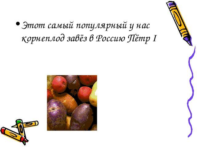 Этот самый популярный у нас корнеплод завёз в Россию Пётр I