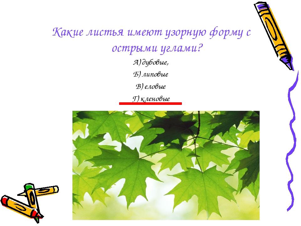 Какие листья имеют узорную форму с острыми углами? А) дубовые, Б) липовые В)...