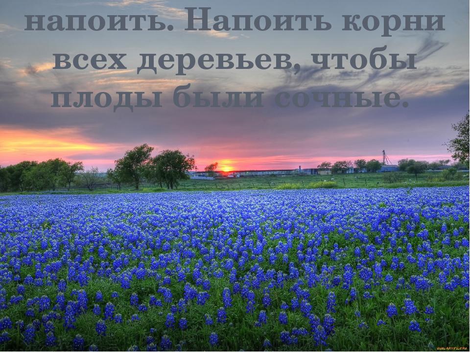 Луга сохнут, пора все напоить. Напоить корни всех деревьев, чтобы плоды были...