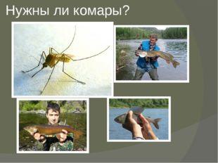 Нужны ли комары?