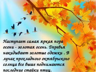 Наступает самая яркая пора осени - золотая осень. Деревья накидывают золотые