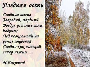 Поздняя осень Славная осень! Здоровый, ядрёный Воздух усталые силы бодрит; Ле