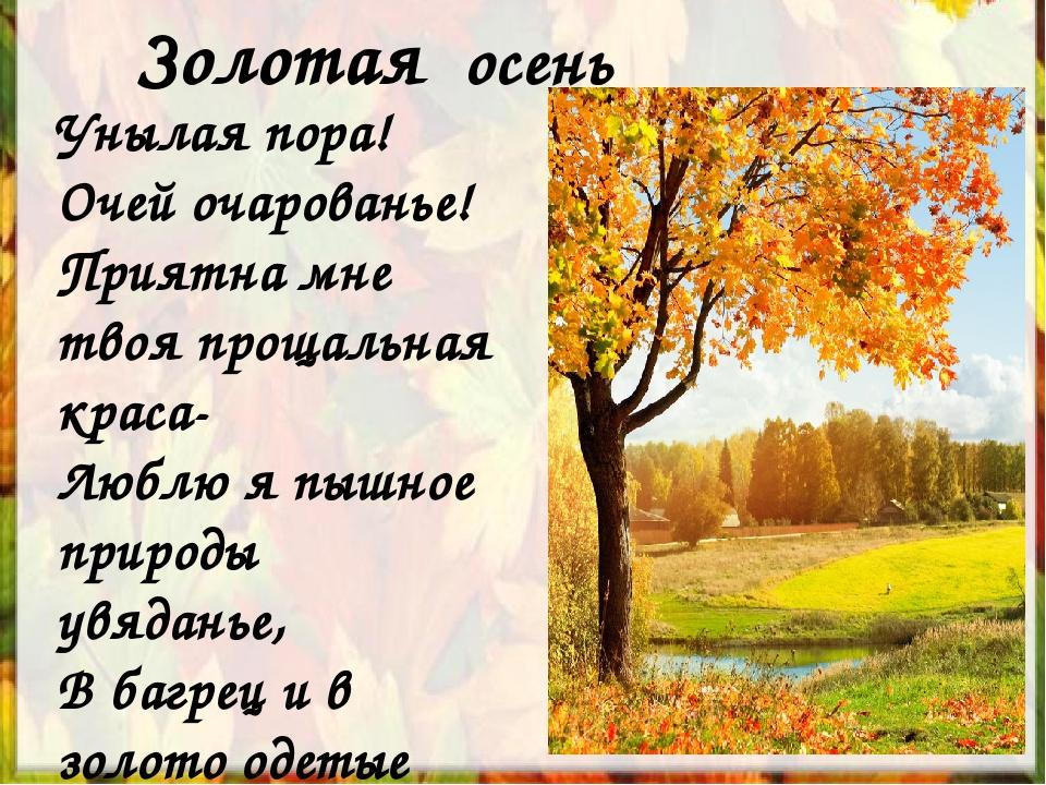 Золотая осень Унылая пора! Очей очарованье! Приятна мне твоя прощальная краса...