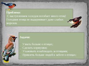 Проблема: С наступлением холодов погибает много птиц! Голодная птица не выде
