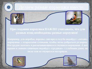 При создании кормушки ВАЖНО учитывать, что для разных птиц необходимы разные