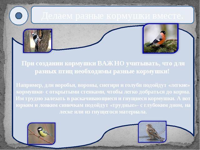 При создании кормушки ВАЖНО учитывать, что для разных птиц необходимы разные...