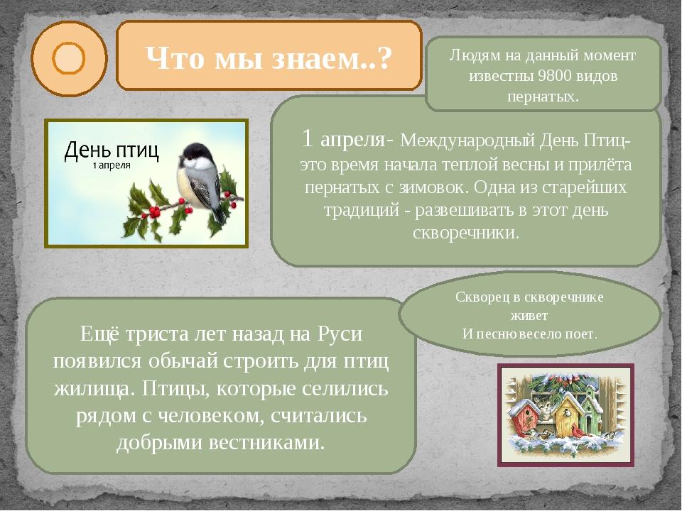 Что мы знаем..? 1 апреля- Международный День Птиц- это время начала теплой ве...