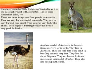 Kangaroo is on the State Emblem of Australia as it is the national symbol of