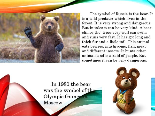 The symbol of Russia is the bear. It is a wild predator which lives in the f...