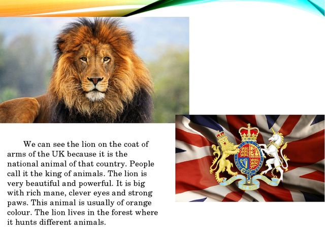 We can see the lion on the coat of arms of the UK because it is the national...