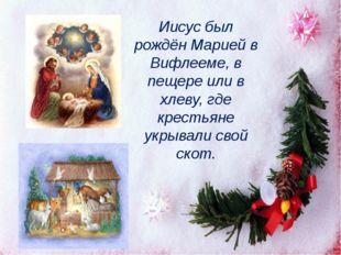 Иисус был рождён Марией в Вифлееме, в пещере или в хлеву, где крестьяне укрыв
