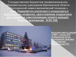 Выполнил работу учащийся «РХМТ» группы №31 Побединский Антон. Руководитель пр