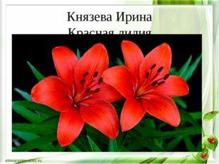 Князева Ирина Красная лилия