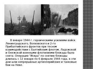 В январе 1944 г. героическими усилиями войск Ленинградского, Волховского и