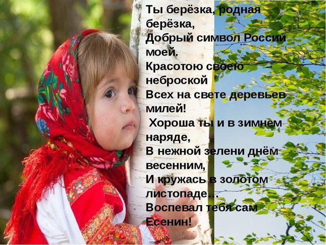 Ты берёзка, родная берёзка, Добрый символ России моей. Красотою своею неброск...