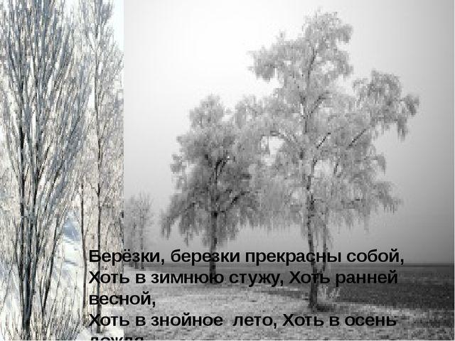 Берёзки, березки прекрасны собой, Хоть в зимнюю стужу, Хоть ранней весной, Хо...