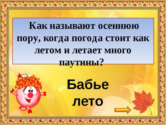 Интернет-ресурсы http://kira-scrap.ru/KATALOG/MULTY_NASCHI/1/0_8af71_8b9bcf50...
