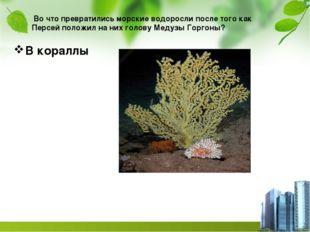 Во что превратились морские водоросли после того как Персей положил на них г