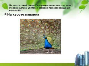 На хвосте какой птицы Гера разместила глаза стоглазого сторожа Аргуса, убитог