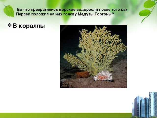 Во что превратились морские водоросли после того как Персей положил на них г...