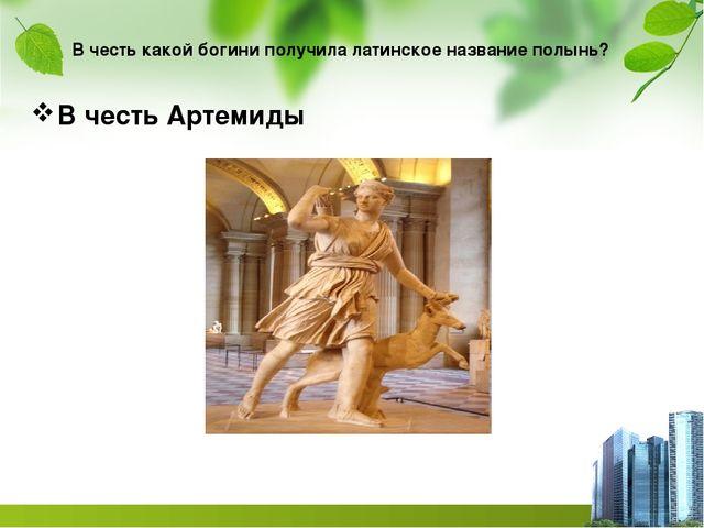 В честь какой богини получила латинское название полынь? В честь Артемиды