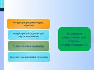 Концепция развивающего обучения Педагогическая парадигма Концепция биологиче