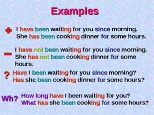 Examples ? Wh? I have been waiting for you since morning. She has been cookin