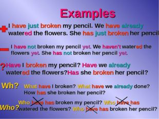 Examples ? Wh? Who? I have just broken my pencil. We have already watered the