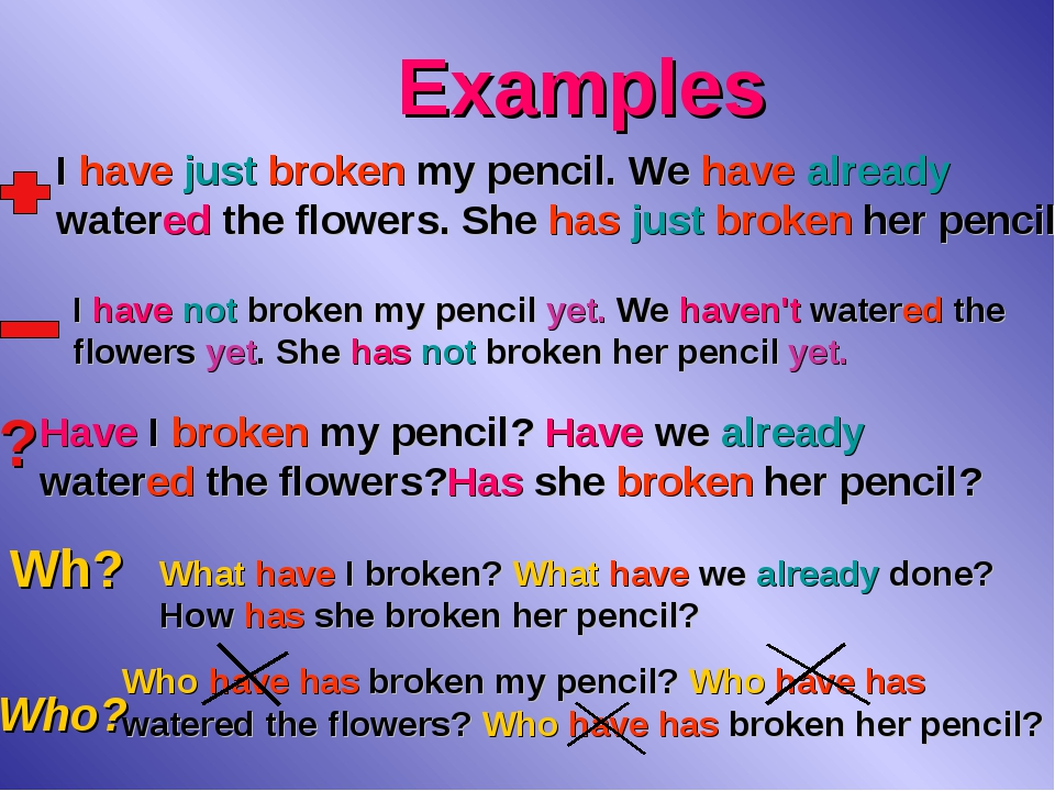 Examples ? Wh? Who? I have just broken my pencil. We have already watered the...