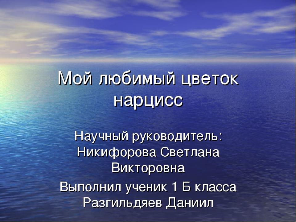 Мой любимый цветок нарцисс Научный руководитель: Никифорова Светлана Викторов...