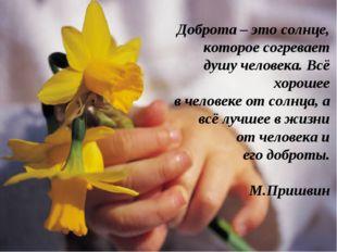 Доброта – это солнце, которое согревает душу человека. Всё хорошее в человеке