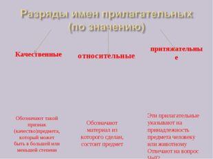 Качественные относительные притяжательные Обозначают такой признак (качество)