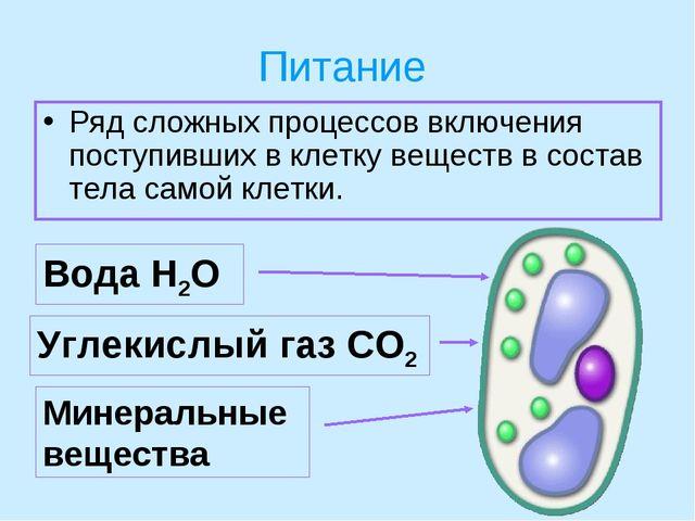 Урок жизнедеятельность клетки 5 класс пасечник фгос
