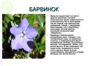 БАРВИНОК Вряд ли существует на свете другое растение, которое получило бы так