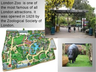 London Zoo is one of the most famous of all London attractions. It was opened