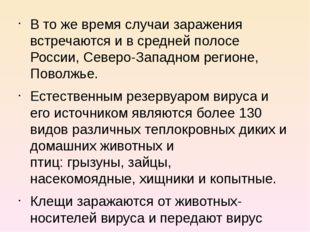 В то же время случаи заражения встречаются и в средней полосе России, Северо-