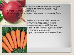 Свекла - двулетняя овощная культура. Содержит соли кальция, йод, богата желе
