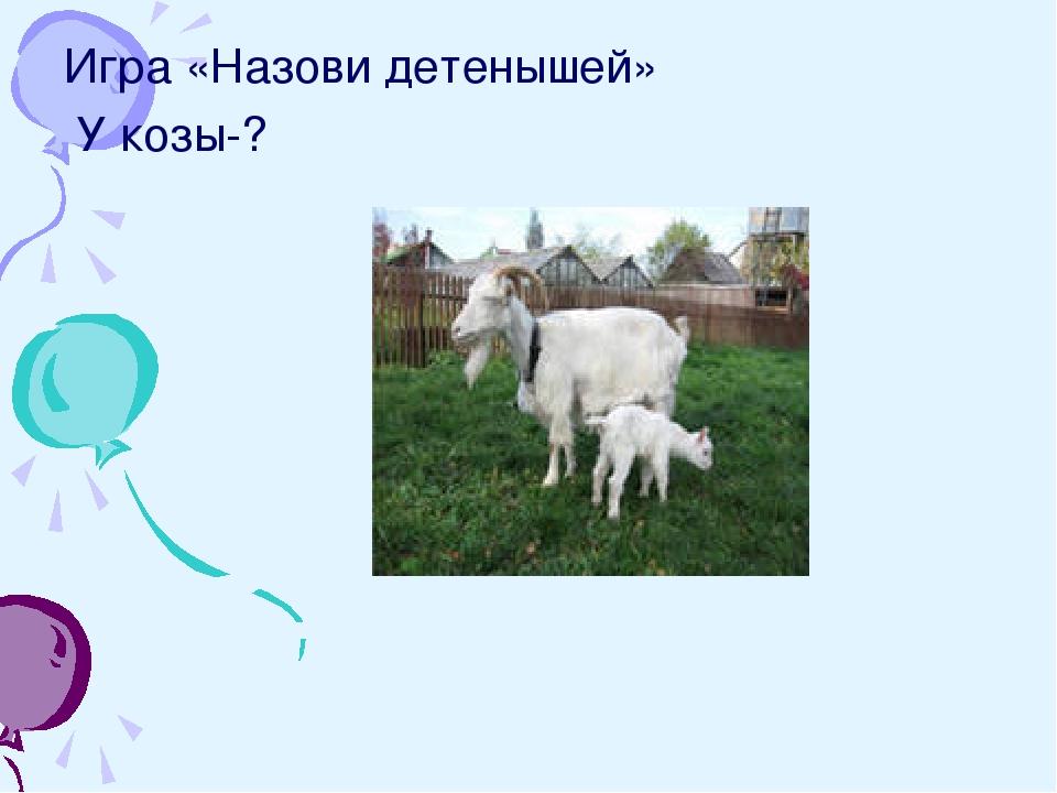Игра «Назови детенышей» У козы-?