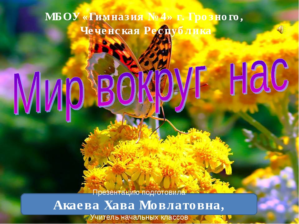 МБОУ «Гимназия №4» г. Грозного, Чеченская Республика Презентацию подготовила...