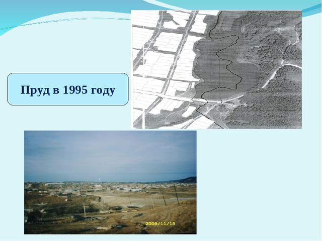 Пруд в 1995 году