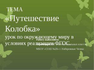 Работу выполнила: Карабицкая Л.Е. учитель начальных классов МБОУ «СОШ №20» г