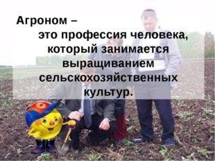 Агроном – это профессия человека, который занимается выращиванием сельскохозя