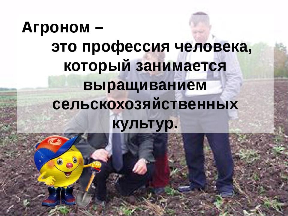 Агроном – это профессия человека, который занимается выращиванием сельскохозя...