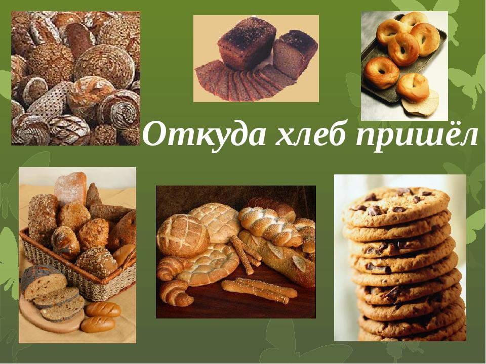 Откуда хлеб пришёл