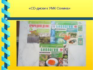 «CD-диски к УМК Сонина»
