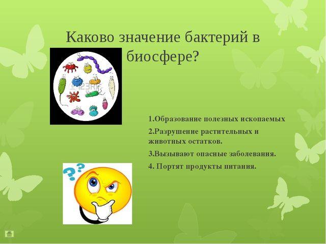 Чем клетки бактерий отличаются от клеток растений и животных? В клетках бакт...