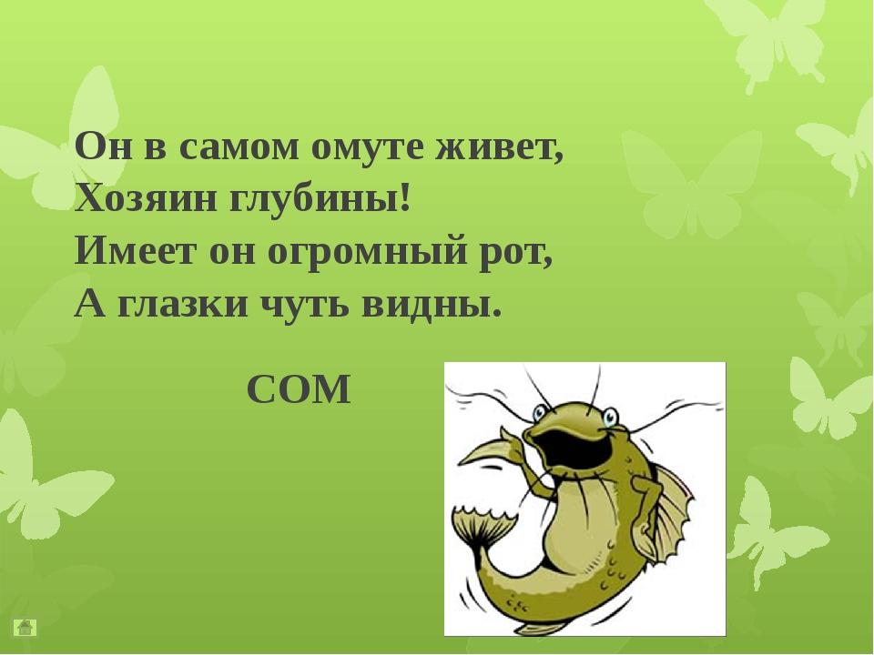 Какое насекомое может поднять груз в 10 раз превышающий его собственный вес?...